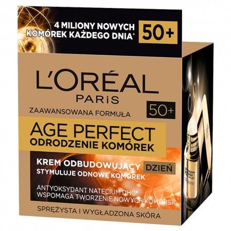 Loreal Age Perfect Odrodzenie Komórek Krem na dzień odbudowujący 50ml