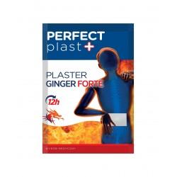 SPLAT*Plaster Ginger Forte 12x18cm